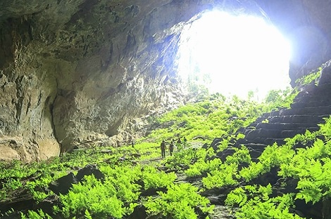 Survival Valley - Thuy Cung cave Tour