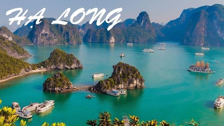 Tour  du  lịch Quảng Bình - Hạ Long - Ninh bình 4 ngày 3 đêm